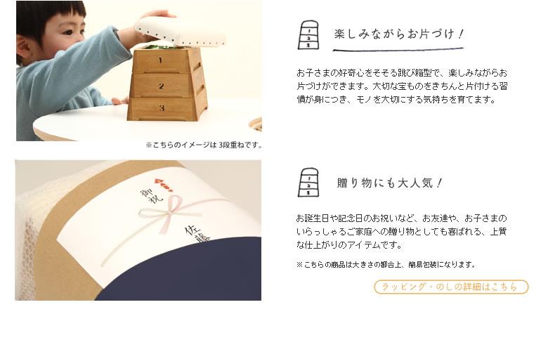 ミニ跳び箱・とび箱小物入れ(5段)03