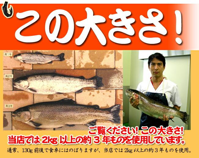 ます寿司 この大きさ
