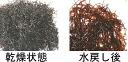 칼라 裳 산/특급 천연 「 寒 ふのり (특급) 」 25g