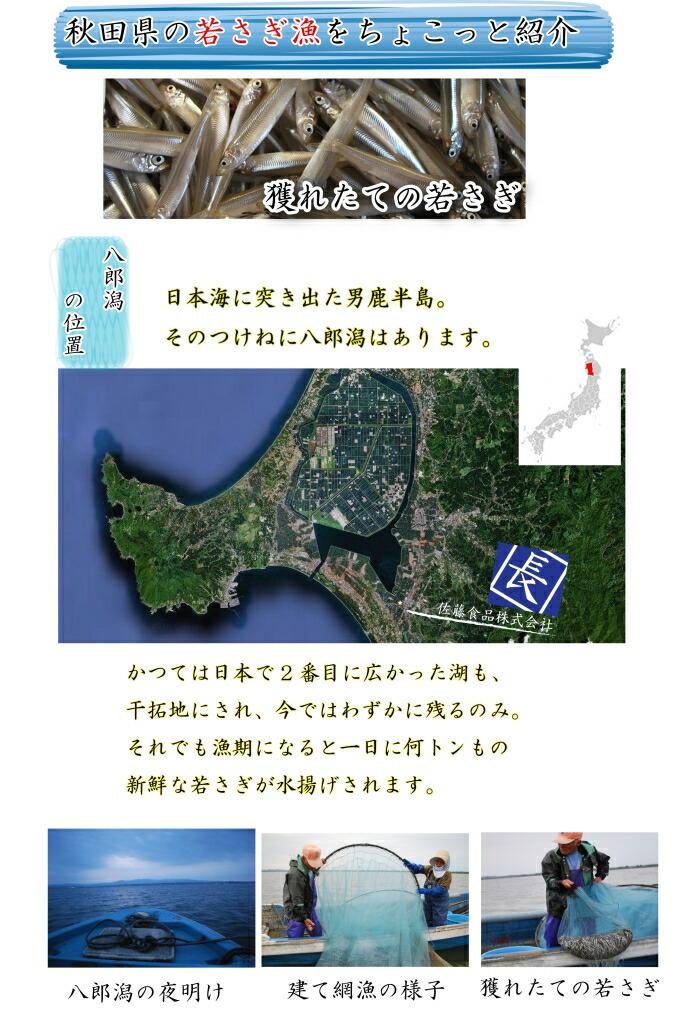 秋田県八郎潟のワカサギ漁の様子
