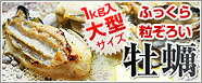 牡蠣むき身