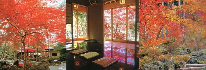 秋の鐘山苑