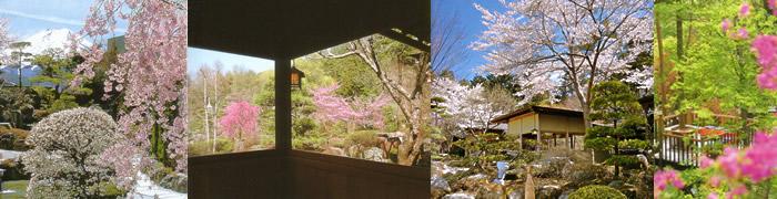 春の鐘山苑