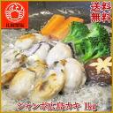 Jumbo Hiroshima カキ 1 kg