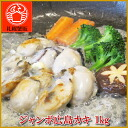 Body / pan / fly / gourmet / souvenir / sea foods / follows facing 1 kg of oyster salted fillet persimmon / カキ / oyster / jumbo / extra-large / Hiroshima /