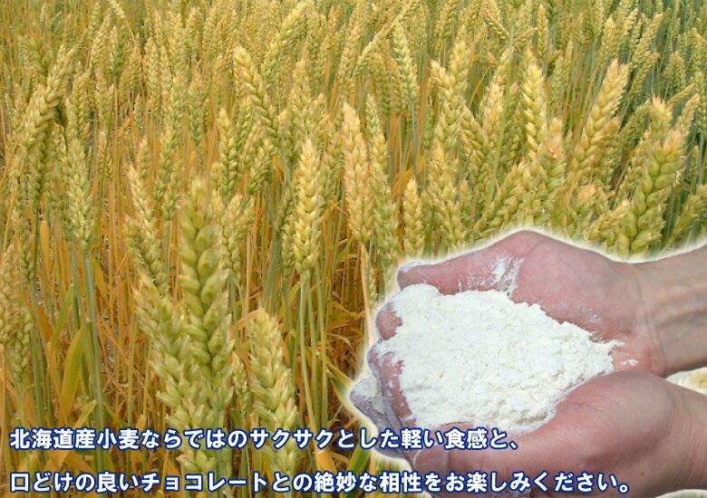 北海道産小麦