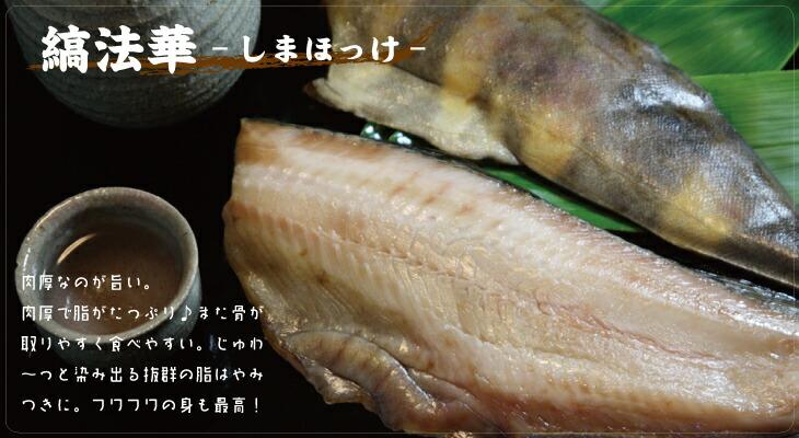 縞法華-シマホッケ-