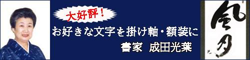 成田光葉・オーダーメイド書
