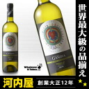 And Vicente Gandia verdejo white 750 ml 12 degrees and artwork donated by Lucy Liu kawahc