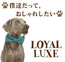 �������ʸ��Ѽ���/ij�ͥ������ʤ�Loyal Luxe/�?����å���