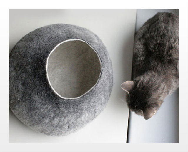 Cat beds photo1