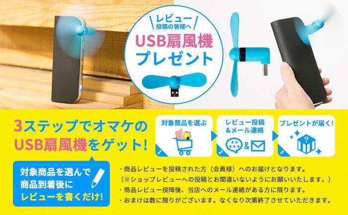 USB扇風機プレゼント