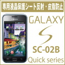DoCoMo GALAXY S exclusive LCD screen protector (reflection, sebum prevents) F70-99B fs3gm