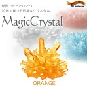 "In just 10 days ""sprouts"" and develops a strange Crystal ★ magic crystal Orange"