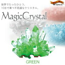 "In just 10 days ""sprouts"" and a mysterious Crystal ★ magic crystal green to grow"