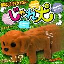 minimal Zoo frisks; a dog (toy poodle)