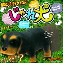 minimal Zoo frisks; a dog (miniature Daks)
