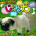 [Book: around the end of October: minimal Zoo play dog (PUG)