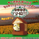 """I'm angry feeling! ""Alarm clock tells time in a voice ♪ cute cuckoo clock for Palm-sized 'anywhere but chocolate brown cuckoo clock'"