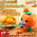 Ehime Prefecture-accredited! Strange Orange rumored Orange juicer