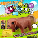 [Book: end of March] NEW minimal Zoo play dog (miniature Dachshund/red)