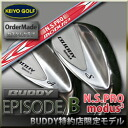 BUDDY EPISODE B / N.S.Pro MODUS ³ wedge