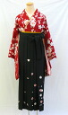 "Small furisode and hakama set ""red hannari Yae-zakura""-memorable graduation ceremony ~"