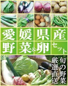 愛媛産野菜セットへ