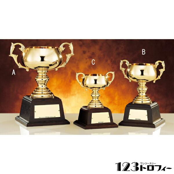 ゴールドカップ N-4801
