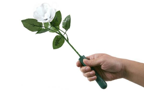 光る薔薇レインボー