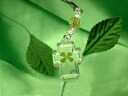 Lucky four leaves clover strap cross