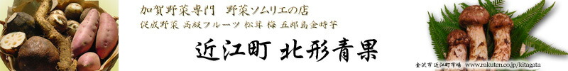 近江町北形青果:加賀百萬石 近江町市場より、旬の加賀野菜をお届けします。