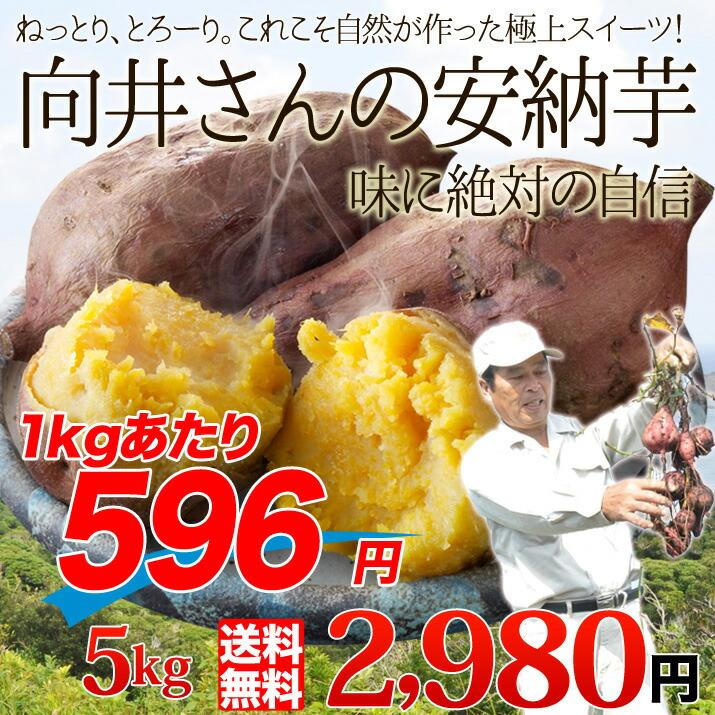 向井さんの種子島産安納芋