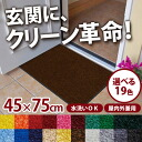 Excellent water absorption (excluding Hokkaido and Okinawa and remote islands) and stain remover universal door mat standard eco 45 x 75 cm solid (made in Japan) indoor and indoor / outdoor cum for