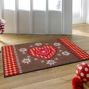 Washable doorstep 50x75cm indoor, outdoor combined use that wash+dry (wash Ann dodo rye) Alpengluck is thin (except Hokkaido, Okinawa and the remote island), and is durable