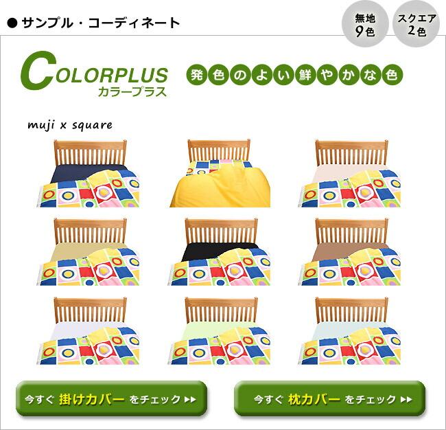 カラープラスのコーディネート例