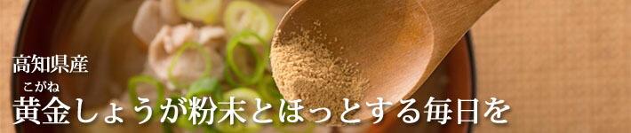 高知県産黄金しょうが粉末