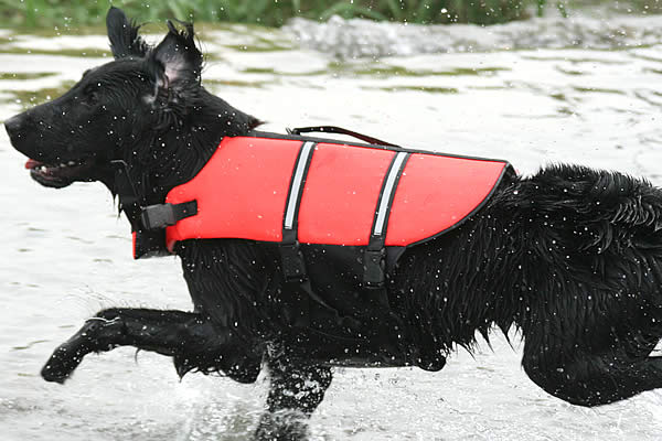 スーパーライフジャケット しっかりフィット!水辺の安全対策に