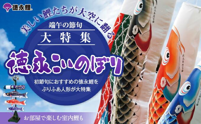 徳永鯉のぼり 吉兆