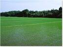 리바이벌 기간 한정 판매 26 년 버전 입 구매 전문가의 염가 쌀 20kg (5kg× 4) 홋카이도 1080 엔 접속 오키나와 낙도 요금은 2160 원