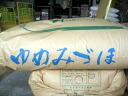 초 염가 26 년 햅 쌀 이시카와 현 중 노토 산 유 みづほ 현미 5kg