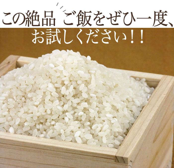 http://image.rakuten.co.jp/komeya-edogura/cabinet/shohin-top/24nen/tugaru-8.jpg