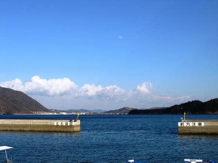 須崎港 風景