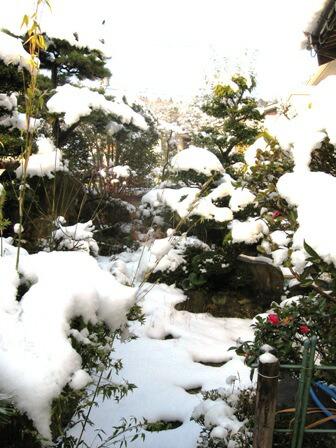 新高山の庭