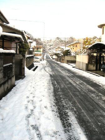 新高山 道に雪