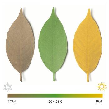 Leaf ��ա�+d