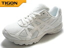 Order accepted by TIGON Zeroone ASICS ASICs tigon running AZ-2030 (2040) WH