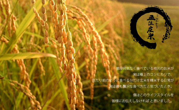 五位庄米(富山県産こしひかり)
