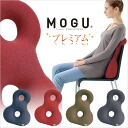 Mogu-pbs8-ks01