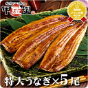 Gifts & & end of year and new year shipping OK! Kagoshima Prefecture, oversized unagi Kabayaki around 200 g x 5 tail